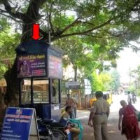 Trafficsignboards Dolphinschool Advertising in Madurai – MeraHoarding