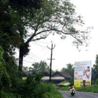 Painkannur Hoardings Advertising in Malapuram - Merahoardings